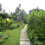 Foto The White Villas Ubud