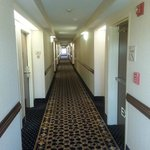 Bilde fra Hampton Inn & Suites Atlanta Airport North
