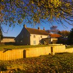 Autumn at Woundales