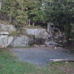 Somes Sound View Campground resmi