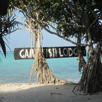 Photo of Game Fish Lodge