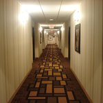 Φωτογραφία: BEST WESTERN PLUS First Coast Inn & Suites