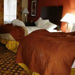 Econo Lodge Richmond Hill resmi