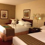 Drury Inn & Suites Atlanta South照片