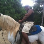 Mena's And Bodden Horseback Riding Private Day Tours