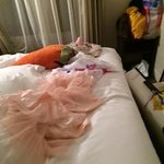 shocked to find the mess in the room! before I left that tutu was inside the luggage