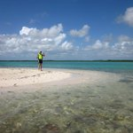 Foto de Windows to the Sea Kayaking and Snorkeling