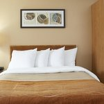 Fully equipped guest rooms