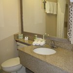 Foto de Holiday Inn Express Hotel & Suites Grand Rapids Airport