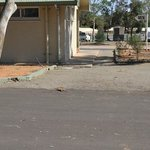 Φωτογραφία: Port Augusta BIG4 Holiday Park