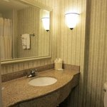 Φωτογραφία: Hilton Garden Inn Charleston Airport