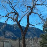 View of Pikes Peak mountain from the park nearby lodge