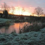 Winter dawn over the pond