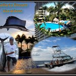 Vallarta Dream Vacations