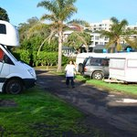 Foto de Takapuna Beach Holiday Park