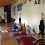 KARE Ayurveda & Yoga Retreat의 사진