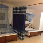 Фотография Blue Elephant Tourist Guest House