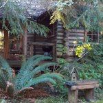 View of the cabin from the pond