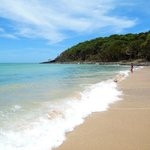 Noosa Backpackers Resortの写真