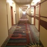 Photo of Holiday Inn Houma