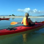 Pacific Coast Kayaks - Day Tours