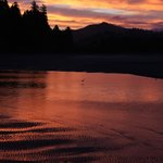 Siletz Bay Lodge照片