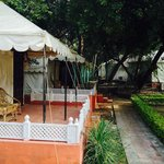 The Aravali Tent Resort resmi