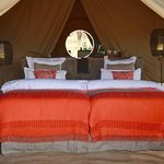 Double-Twin Luxury Tent