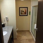 Foto de Hampton Inn and Suites Detroit/Airport-Romulus