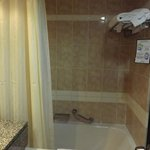 the shower with tub