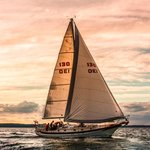 Sailing Yacht Scout - Day Tours