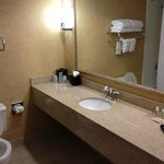 Φωτογραφία: Holiday Inn BWI Airport