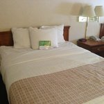 La Quinta Inn & Suites South Burlington照片