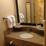 Photo de SpringHill Suites Detroit Southfield