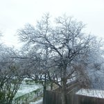 this was the view we woke to after the ice/snow storm the night we arrived. We r from Phoenix