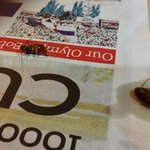 Two cockroaches from our 2nd room (803)