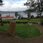 Tamar Valley Winery Tours
