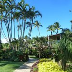 The Mauian Hotel on Napili Beach Foto