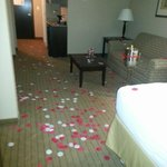 Foto Holiday Inn Express & Suites Fort Myers- The Forum