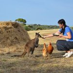 Foto van Eleanor River Homestead - Kangaroo Island
