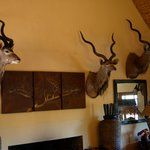 Foto de Valley Bushveld Country Lodge & Safari Tours
