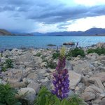 Foto de Tailor-Made-Tekapo Backpackers