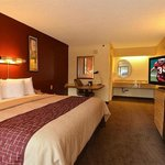 Φωτογραφία: Red Roof Inn Milwaukee Airport