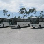 Front view of three of our spacious buses!