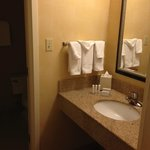 Courtyard Chicago Arlington Heights/South resmi