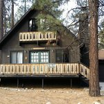 Bilde fra Sleepy Forest Cottages