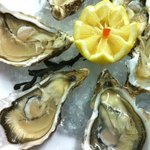 huitres oyster from france