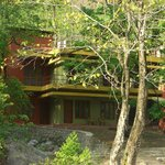 Rainforest House - Rishikesh