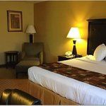 Photo de BEST WESTERN Saluki Inn