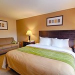 Comfort Inn Near Plano Medical Center